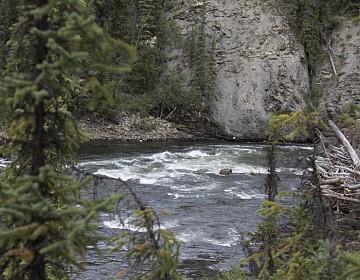 Chute near Rock wall in Prevost Canyon