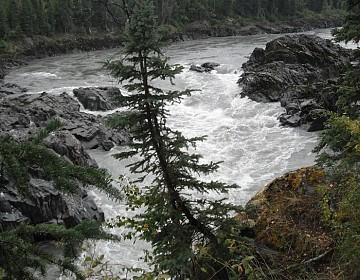 Looking upriver at Fraser Falls