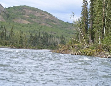 Small rapid on Pelly