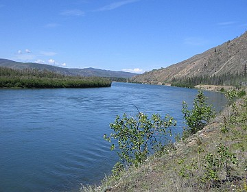 Yukon River from Thoms location